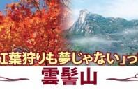 全体が紅葉する山「雲髻山(雲髻山旅遊区)」広東省新豊県
