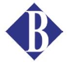 Borderless ロゴ