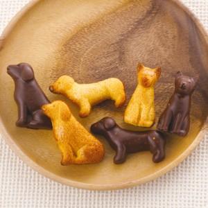 無印良品のキットで作った手作りチョコレート