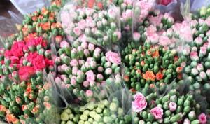 色々な種類のお花が並ぶ