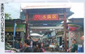 広州花地湾花鳥魚虫批発市場