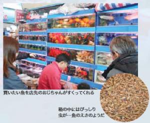 買いたい魚を店先のおじちゃんがすくってくれる