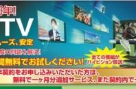 キャンペーン実施中!海外から日本のテレビを「忠基TV」