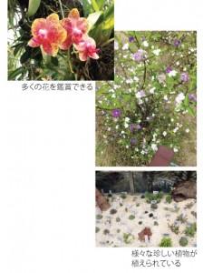Southern China Botanical Garden