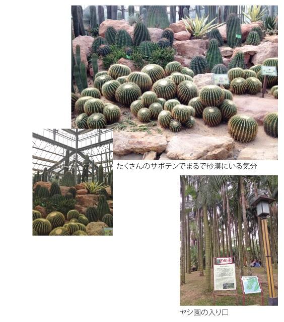 華南植物園