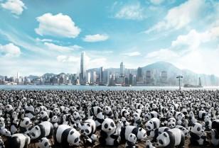 1600匹のパンダ「1600 Pandas World Tour」香港上陸!