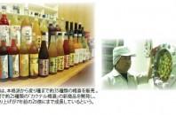 梅酒杜氏による梅酒の漬 け込みセミナー(大手酒造会社の中野BC)