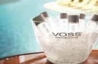 中国向けブログ開通「VOSS」でイベントや最新情報をチェック
