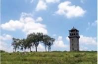 広東省の世界遺産「開平望楼」注目の4ヵ所