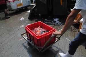 トロ箱を台車で運ぶ