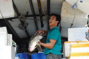 香港仔魚類批発市場