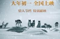 中国遊牧民を感じられる映画 「神なるオオカミ」2月19日上映