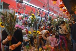 色々な種類の花が並ぶ