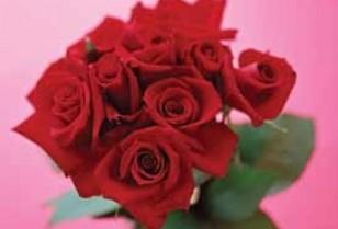 バレンタイン特集1・香港のバレンタイン