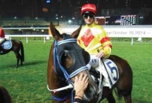 香港競馬特集4・競馬体験レポート