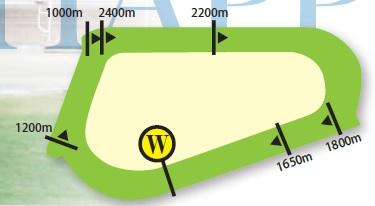 ハッピーバレー競馬場コース