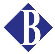Borderless MANAGEMENT LOGO