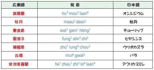 花の発音表