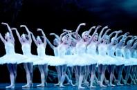 イングリッシュ・ナショナル・バレエ団公演の「コッペリアと白鳥の湖」広州