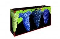 300年以上のワイングラス名門「リーデル」がギフトセットを限定販売