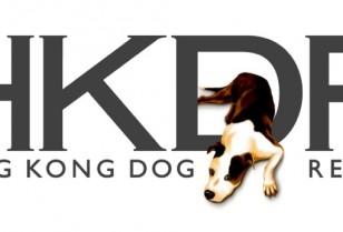 犬を保護する団体機関「香港ドッグレスキュー(HKDR)」