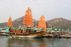 ドラゴンボート大会などさまざまな活動が体験できる