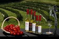 オーガニックトマトワイン「Omerto Sec」&「Omerto Moelleux」ウェブで販売