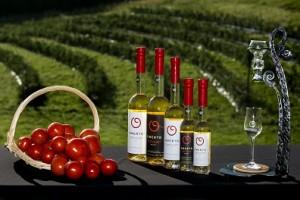 トマト農園とワイン
