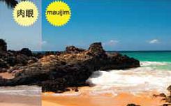 光を軽減するMaui Jimのサングラス