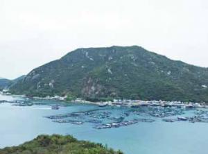 ラマ島(南丫島)