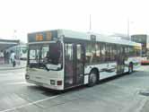 嶼巴 NLB New Lantao Bus Company (1973) Limited