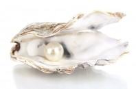 生薬「真珠」の秘密 周漢方医のアドバイス