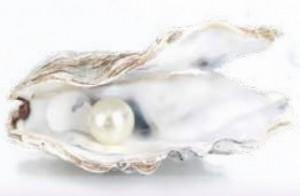 生薬「真珠」の秘密