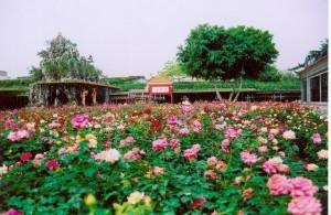 宝墨園の美しい庭園