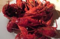 日本ではあまり食べれない「ザリガニ料理」の試食レポート