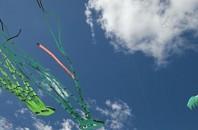 陽江市の伝統、重陽節に「凧揚げフェスティバル」が開催