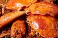 蟹食べ放題の豪華ディナービュッフェ「喜記蟹将軍」銅鑼湾(コーズウェイベイ)
