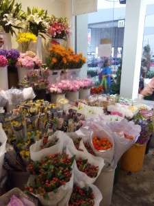 Clingo Florist
