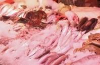 ローカル食材マーケット「僑怡苑肉菜総合市場」広州市天河区