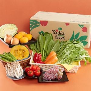 らでぃっしゅぼーや 新鮮野菜デリバリー