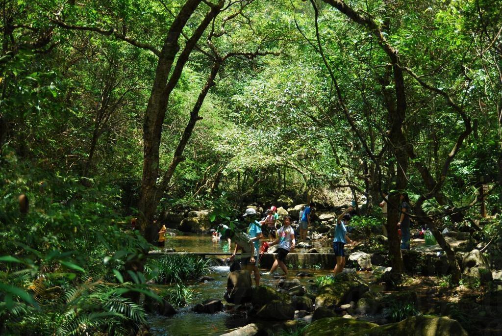 大埔滘自然保護区