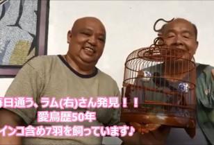 香港動画【Bird Garden】
