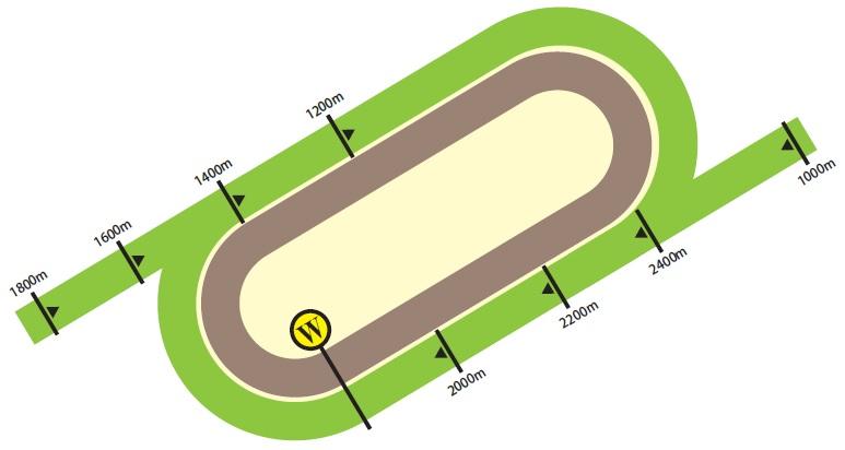 沙田競馬場