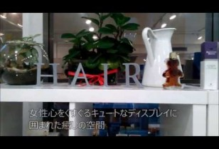 美容特集企画【&HAIR】