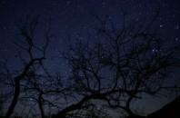 星がきれいに見える場所 阿婆六村