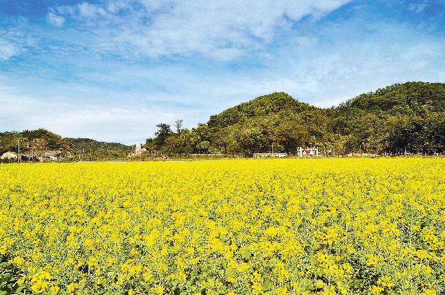 Hongshan village