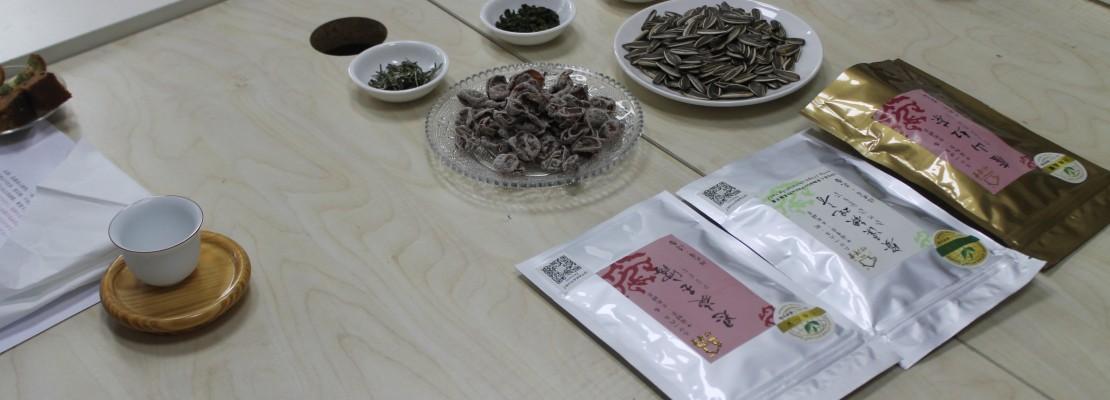TLI深圳で言葉も文化もまるごと中国体験!