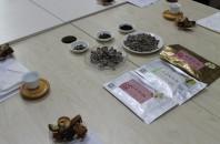 TLI深圳で言葉も文化もまるごと中国体験!~中国茶講座~