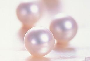 装いの秋!真珠のネックレスの選び方
