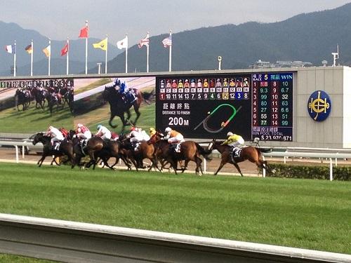 季節限定_香港国際競馬観戦5